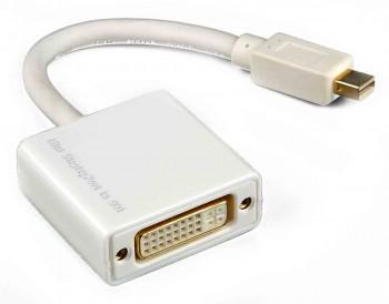 Display port mini (male) to DVI (female)